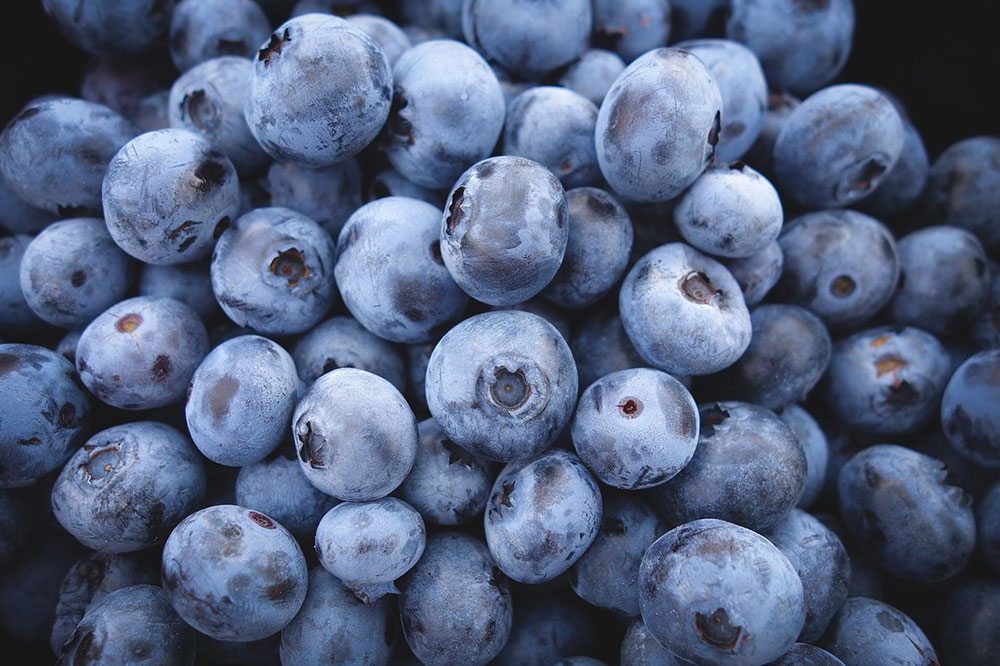 Presentation of the Seasonal Blueberry Menu